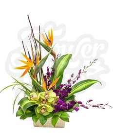 Tropical Punch   FlowerChix This array of birds of paradise, vibrant purple dendrobium orchids, large cymbidium orchids,  and lush greenery are sure to throw a tropical punch in someone's day!  Designed exclusively by Flower Chix!