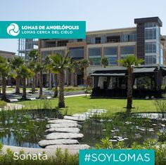 Lomas de Angelópolis es tu mejor oportunidad para invertir en la zona con la mejor plusvalía de la ciudad de Puebla.