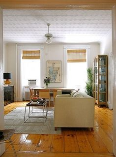 (show aaron)  bamboo blinds - i've always wanted them, he doesn't like them.  this post on apartment therapy has a bunch of examples of cool bamboo blinds