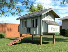 Backyard Chicken Product: Coop Building Plans - Daisy Coop w/ Run Building Plans (12 chickens) - from My Pet Chicken