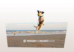 Nessa página você vai encontra um vídeo tutorial mostrando como fazer um efeito bem legal, uma perspectiva em 3D no Photoshop. Um efeito de profundidade...