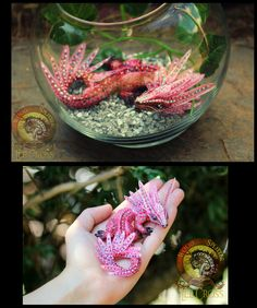 SOLD POPPY Aquarium Pet Baby Dragon! by Wood-Splitter-Lee