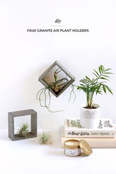 Faux stone air plant holders – Make and Tell