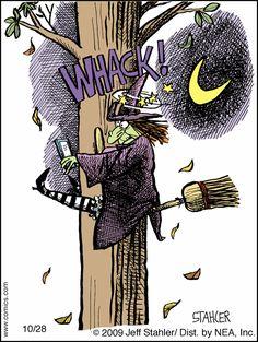 Don't hex and fly! Theme Halloween, Halloween Painting, Halloween Prints, Fall Halloween, Happy Halloween, Halloween Decorations, Halloween Ideas, Laugh Cartoon, Funny Cartoons