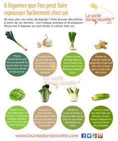 La Santé dans l'Assiette: Fiche pratique - 6 légumes que l'on peut faire repousser facilement chez soi Permaculture, Culture Tomate, Good To Know, Healthy Life, Paleo, Nutrition, Green, Biscuits, Gardening