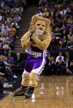 Slamson the Lion, Sacramento Kings...this guy is amazing always keeps the place going!