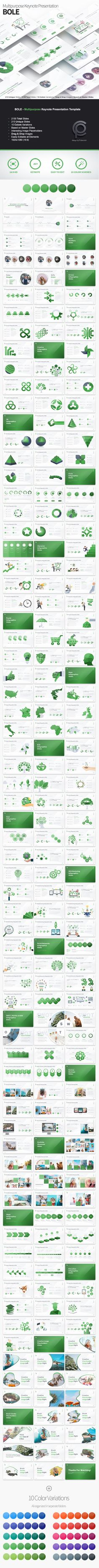 Bole - Multipurpose Keynote Presentation - Business Keynote Templates  Download link: https://graphicriver.net/item/bole-multipurpose-keynote-presentation/22040821?ref=KlitVogli