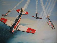 T-6 Esquadrilha da Fumaça / Smoke Squadron - Brazil