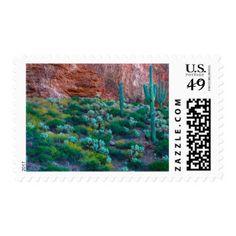 USA, Arizona. Desert Flora Postage