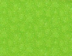 "EOB Clearance, 25"" Fabric, Polka Dots, Candy Dots by Blank Quilting, Lime Green Polka Dots, Lime Green Fabric, 00554"