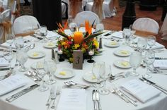paradise wedding thems | Photo Gallery - Photo of Flower Centerpiece with Bird of Paradise