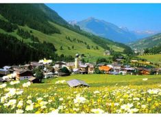 Village Saalbach in summer