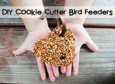 DIY Cookie Cutter Bird Feeders {Kids Craft Tutorial}