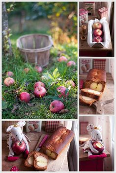 Pain d'épices aux 3 pommes  ( Sans Lait, IG Bas )