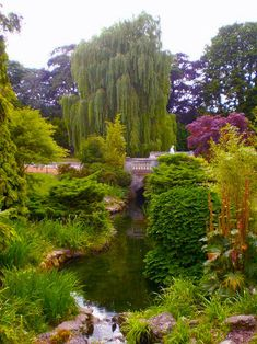 Dulwich Park, in South East London. can you believe this is South East London