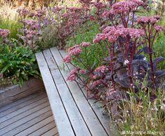 Pergola With Roof Plans Cheap Pergola, Diy Pergola, Pergola Kits, Pergola Ideas, Pergola Carport, Terrace Garden Design, Rooftop Garden, Balcony Gardening, Terrace Ideas