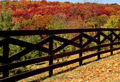 Black post fence in fall sets boundary for horse farm, Missouri
