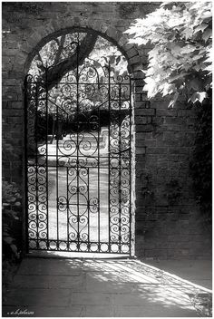 By manufacturing bespoke gates and railings, we can ensure that the ironwork we provide will compliment and enhance the character of your property. Gate Hinges, Gate Latch, Gate Hardware, Driveway Gate, Fence Gate, Fences, Outdoor Garden Rooms, Gate Automation, Old Gates