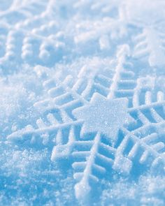ImageFind images and videos about winter, christmas and snow on We Heart It - the app to get lost in what you love. I Love Snow, I Love Winter, Winter Snow, Hello Winter, Winter Colors, Blue Christmas, Winter Christmas, Winter Holidays, Merry Christmas