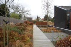 Winterbeeld | ontworpen door GRASVELD Tuin- en Landschapsarchitecten Sidewalk, Design, Side Walkway, Walkway, Walkways, Pavement