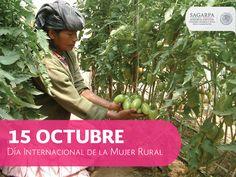 Día internacional de la mujer rural. SAGARPA SAGARPAMX