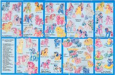 My Little Pony Pamphlet