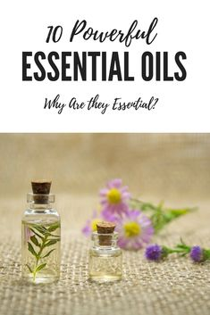 My Favorite Essential Oils, along with the Benefits and Uses of Each. Find out more at www.healthylifestyleregiment.com #relaxation