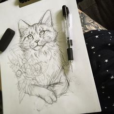 Morning sketch ☕️ - essi tattoo #cat #sketch #pencil #drawing #tattoodesign #illustration #art #instaartist