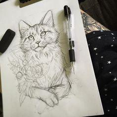 Morning sketch ☕️ - essi tattoo #cat #sketch #pencil #drawing #tattoodesign #illustration #art #instaartist