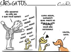 (notitle) - Comics and Strips - Gatos Black Cat Tattoos, Funny Memes, Hilarious, Like Animals, Cat Photography, Funny Comics, I Love Cats, Funny Cats, Dog Cat