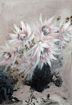 This painting of one of my favourite flowers, blushing bride proteas, is teeny tiny! You can find this, as well a lot of new smaller canvases, very soon at 🖤 The One You Feed, Small Canvas, Mixed Media Artists, Poppies, Sculptures, My Arts, Joy, Illustration, Painting Canvas