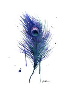 peacock illustrations | Watercolor Illustration Peacock Feather by JessicaIllustration