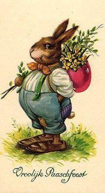 Fat Little Bunny