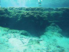 Fresh water scuba diving in Ginnie Spring near Orlando, Florida.