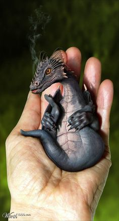 We found the coolest dragon themed items. From motorcycles to art to jewelry, even a dragon taking over a bridge. Clay Dragon, Dragon Art, Magical Creatures, Fantasy Creatures, Fantasy World, Fantasy Art, Dragon Medieval, Dragons, Dragon's Lair