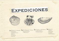 """Inauguración de """"Expediciones"""" en el MAV. Movies, Movie Posters, Art Museum, Visual Arts, Exhibitions, Films, Film Poster, Cinema, Movie"""
