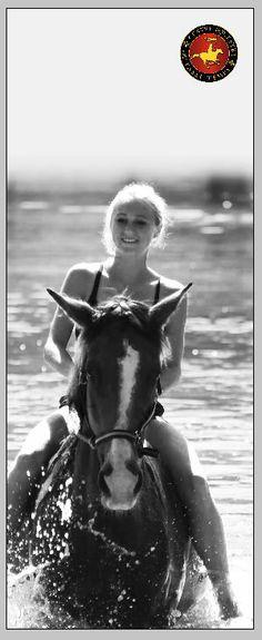 Zwemmen met de paarden