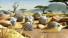 ROLLIN' SAFARI - 'The Waterhole' - Official Trailer FMX 2013 by ROLLIN' WILD. Zebras enjoying their time at the waterhole get interrupted by an unwelcome intruder.
