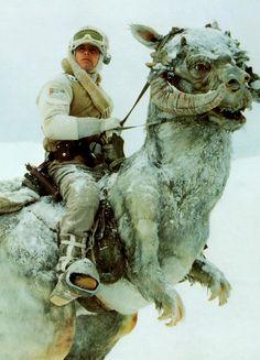 ★★~ Mark Hamill ~★~ in The Empire Strikes Back ~★★   #markhamill. #empirestrikesback