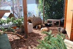 Meerschweinchen Aussengehege, guinea pig outside enclosure. Could work for bunnies too