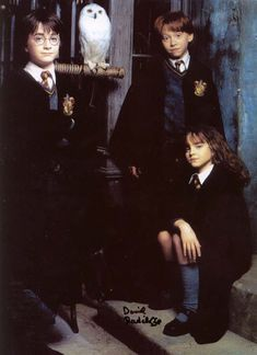 A gallery of Harry Potter and the Sorcerer's Stone publicity stills and other photos. Featuring Daniel Radcliffe, Rupert Grint, Emma Watson, Maggie Smith and others. Harry James Potter, Mundo Harry Potter, Harry Potter Tumblr, Harry Potter Pictures, Harry Potter Cast, Harry Potter Quotes, Harry Potter Universal, Harry Potter World, Harry Potter Characters