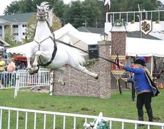 Flying Horse Illusion - http://www.moillusions.com/flying-horse-illusion/