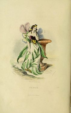 An image from Les Fleurs Animee by J.J. Grandville, originally published in 1847.