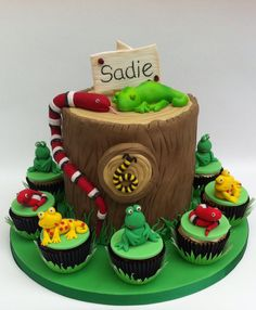 Reptile themed birthday cake and cup cakes - A birthday cake for a young lady who was having a reptile party.
