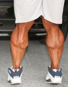 Amazing Guide To Help Build Huge Calves!
