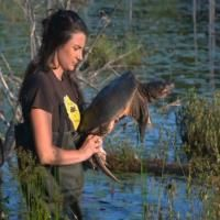 """""""Fix and Release"""" is an award-winning short film that shows us how a small turtle trauma center in Canda has saved thousands of freshwater turtles."""