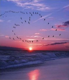 New dawn of conscience.. http://www.whispy.com/blog/new-dawn-of-conscience/ #wisdombits