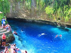 """The Hinatuan River on the Philippine island of Mindanao. The saltwater river is nicknamed the """"Enchanted River"""" because it appears to run from the middle of nowhere, and is ideal for snorkelers and divers."""