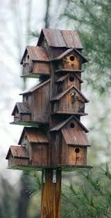 Image result for Bird house condos on a pole