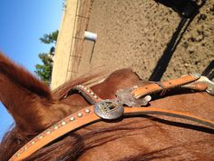 Keep your focus on the next barrel Let your horse fly  Race the clock  And your dreams will go beyond the sky :)